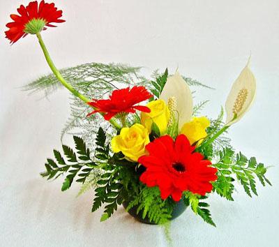 Một vài kiểu cắm hoa đơn giản cho người mới bắt đầu