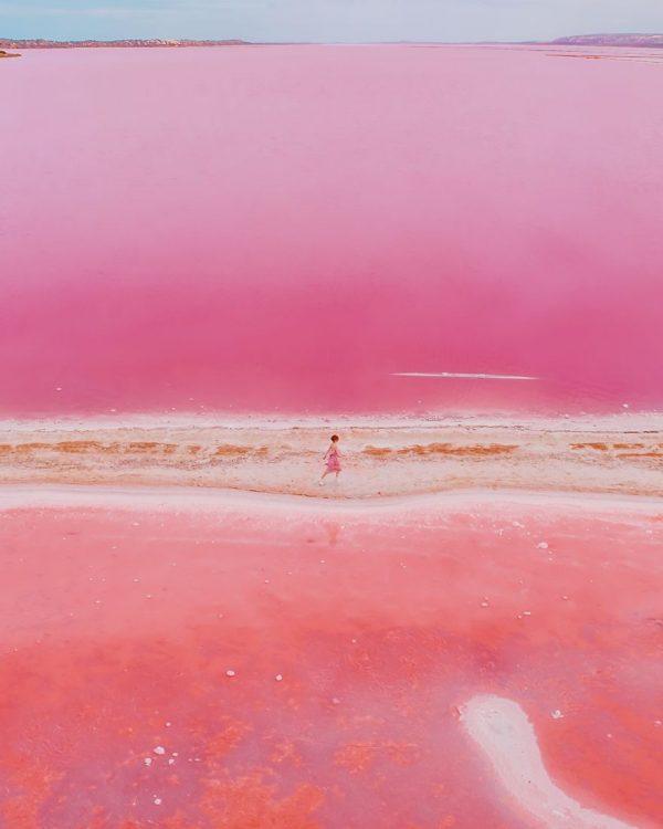 Ý nghĩa của màu hồng trong tình yêu